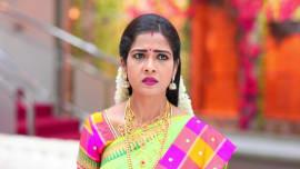 Watch Sembaruthi - 17 Dec, 2018 Full Episode Online   ZEE5
