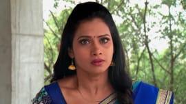 Watch Kalyana Vaibhogam - 4 Dec, 2018 Full Episode Online | ZEE5