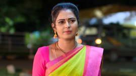 Watch Ninne Pelladatha, TV Serial from Zee Telugu, online only on ZEE5