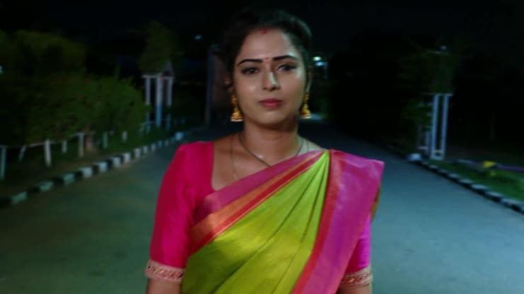 Ninne Pelladatha (Telugu) - 2 Aug, 2019 | Watch Daily Episode