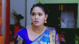 Watch all episodes of Paaru online in Full HD | ZEE5